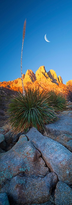 """Crescent Dawn"" Organ Mountains, New Mexico. Jeffrey Murray Photography"