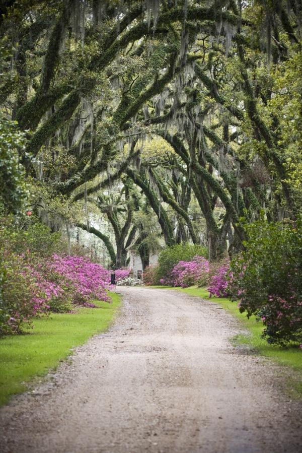 Afton Villa Gardens, St. Francisville, Louisiana (by Oivanki)