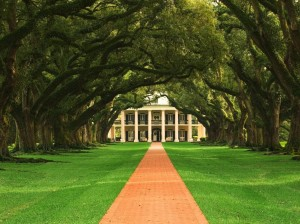 The most famous oak trees in the world. Oak Alley Plantation, Vacherie, Louisiana. Image from awonders.com.