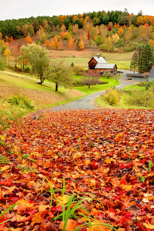 Sleepy Hollow Farm, Woodstock, New York photo via sueno